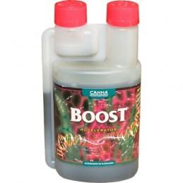 Boost Acelerator (Canna)