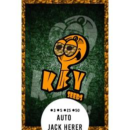 Auto Jack Herer.- Key Seeds