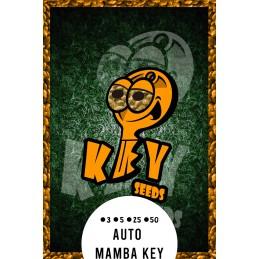 Auto Mamba Key.- Key Seeds