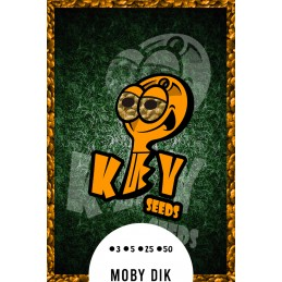Moby Dik.- Key Seeds