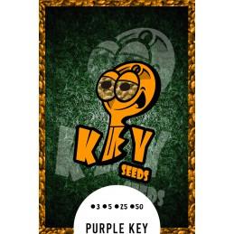 Purple Key.- Key Seeds