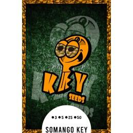 Somango Key,- Key Seeds