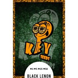 Black Lenon.- Key Seeds