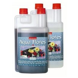 Aqua Flores A+B (Canna)