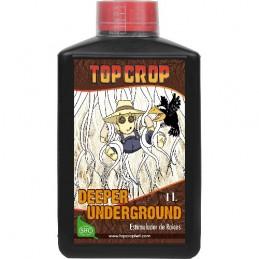 Deeper Underground Top Crop