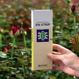 En Strip 3000 (Encarsia Formosa) (Mosca Blanca)