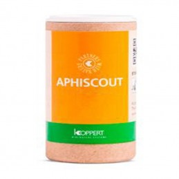 Aphiscout 250 ( Avispas Para Pulgón ) Koppert