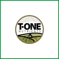 T - ONE