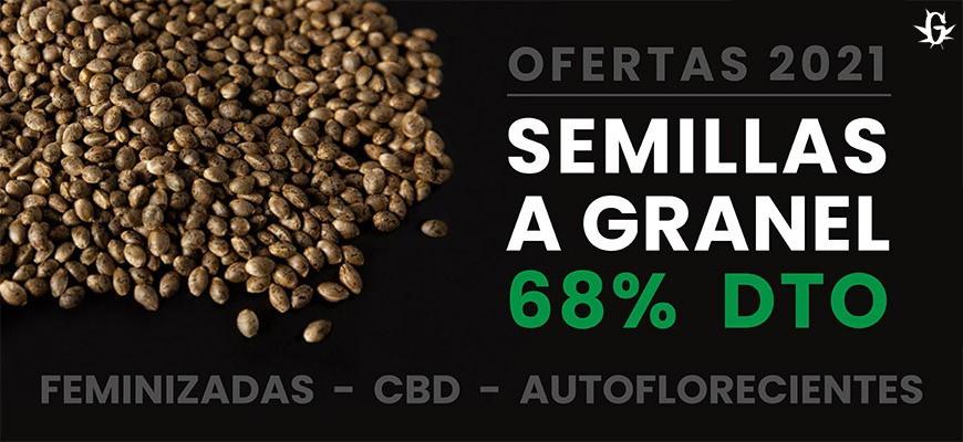 Semillas a granel a 0,80€